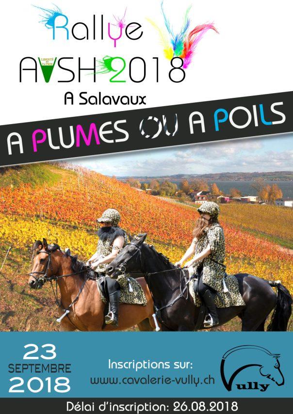 Affiche-AVSH-2018-2